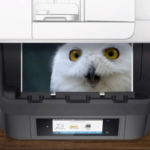 HP Social Content: Commercial Printers